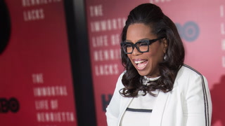 Oprah's Surprisingly Modest Chicago Home Bounces Back on the Market