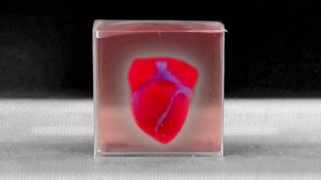 Researchers create 3-D printed heart using patient's cells