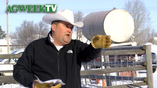 AgweekTV: DAPL protesters threaten bison sale