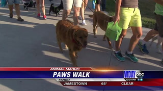 Nearly 200 pets gather for 27th annual PAWS walk