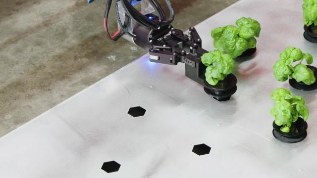 The Farm of the Future Might Be Entirely Run by Robots