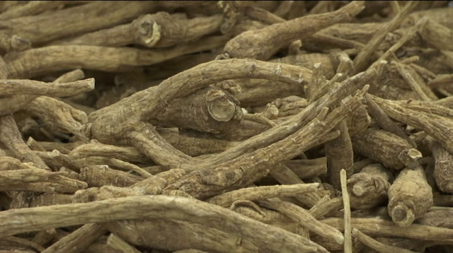 US Ginseng Could Take Hit in Looming Trade War