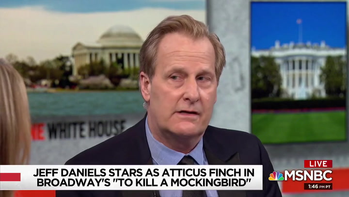 Jeff Daniels Tears Apart 'Worthless' Republicans Enabling Trump on MSNBC: 'Democracy Is at Stake'