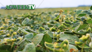 AgweekTV: The Dicamba Dilemma (Full Show)