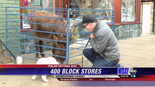 Downtown Fargo stores held petting zoo Sunday