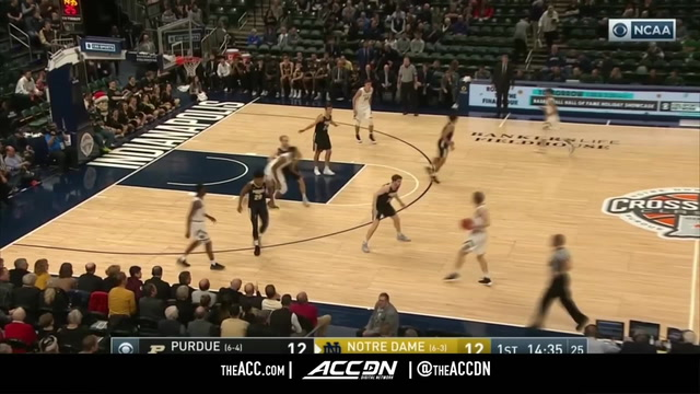 Purdue vs. Notre Dame Basketball Highlights (2018-19)