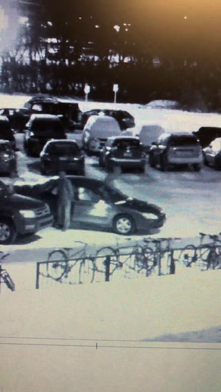 Surveillance image of the suspects