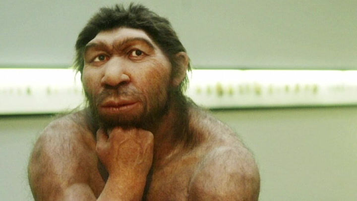 Neanderthals Who Had Sex With Humans Passed on a Crucial Defense Strategy