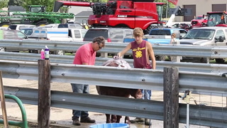 Nobles County Fair -- Aug. 11, 2017