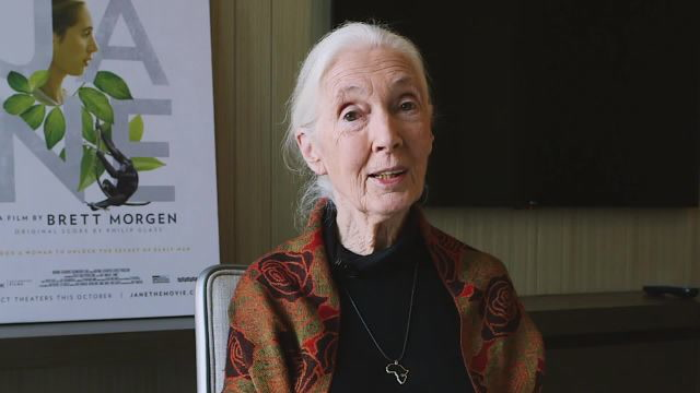 Jane Goodall Tells You How to Save The World