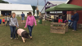 Goodhue County Fair 2017