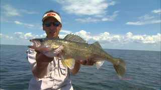 AnglingBuzz: Spinners & Artificials Tantalize Summer Walleyes