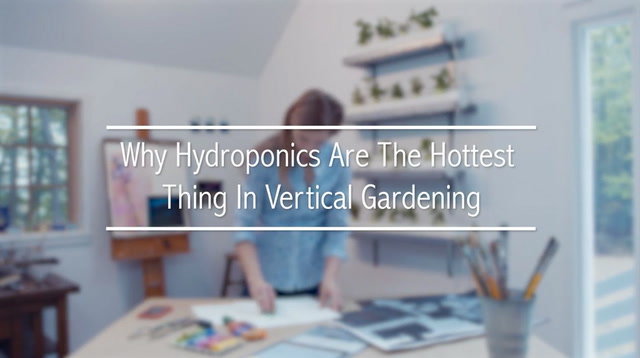 Why Hydroponics Are The Hottest Thing In Vertical Gardening