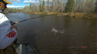 AnglingBuzz: River Muskies Migrate to Deep Holes in Fall