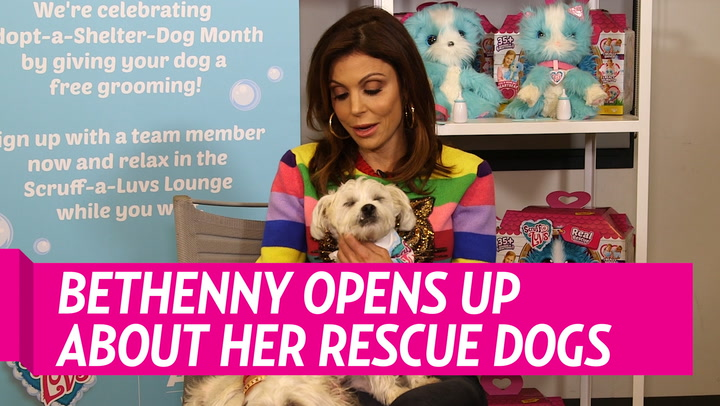 Bethenny Frankel Believes the 'Memory' of Her Late Boyfriend Dennis Shields 'Lives on' in Their Dogs Biggy and Smallz