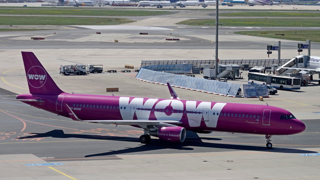 Stranded Wow Air passengers vent frustration after sudden cancellation of all flights