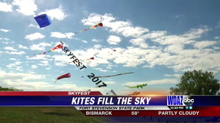 Many flew kites at annual SkyFest