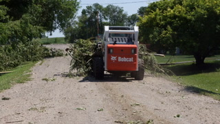 Trees were damaged a utility lines came down Friday afternoon in Glenfield, N.D., as a severe thunderstorm moved through the area. Chris Olson / The Sun