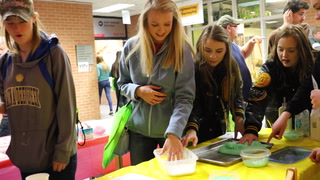 Jordyn Tayloe (front) and Nicole Young, from Pequot Lakes, pet donkeys Friday in the Agricultural, Food and Natural Resources section of the Bridges Career Exploration Day at the Brainerd Campus of Central Lakes College. Kelly Humphrey/Brainerd Dispatch - Gallery and Video