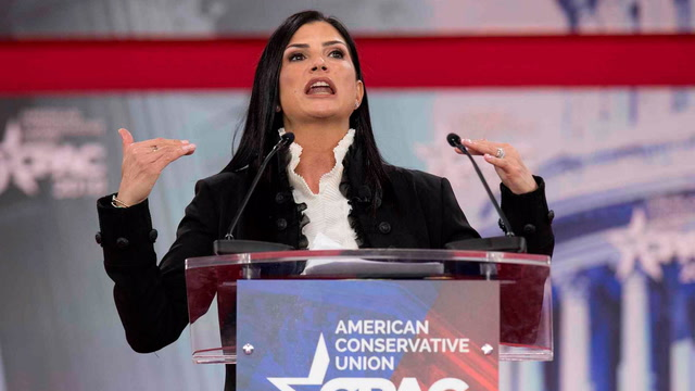 Who is Dana Loesch?