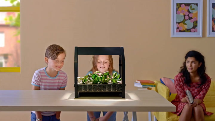 Ikea's Newest Product Introduces Hydroponics To Mainstream America