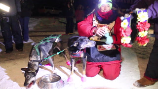 Redington wins John Beargrease Sled Dog Marathon