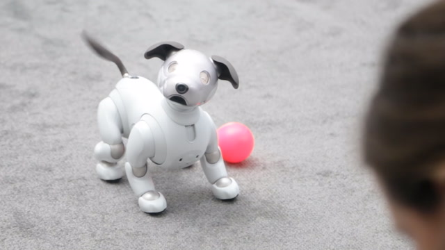 We saw the future at CES and it looks adorable