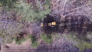 Clearing trees for CSAH 77 project