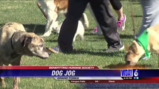 Paws hit the pavement for the Grand Forks Dog Jog