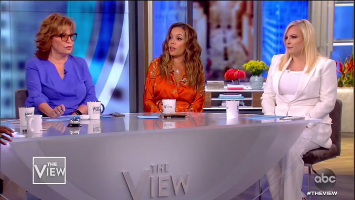 Meghan McCain Clashes With 'View' Co-Hosts: 'I'm Not Living Without Guns'