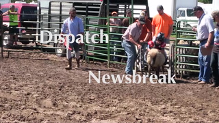 Dispatch Newsbreak: August 29, 2016