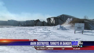 Firefighters battle a blaze at a turkey farm Tuesday, March 6, near Walcott, N.D. Special to The Forum
