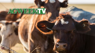 AgweekTV: May Beef Month (Full Show)