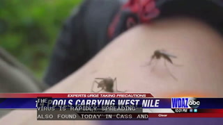 West Nile rapidly spreading as 14 Grand Forks pools test positive