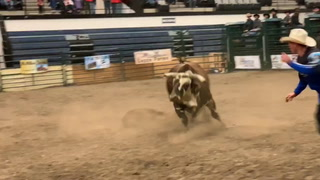 Lebaron wins Dual in the Dirt bull riding finals