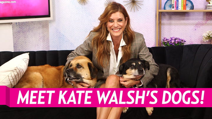 Kate Walsh Flies Her Dogs Business Class, Says Life Would Be Lonely Without Them