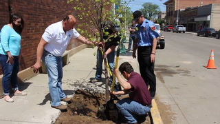 Dickinson plants trees for Arbor Day