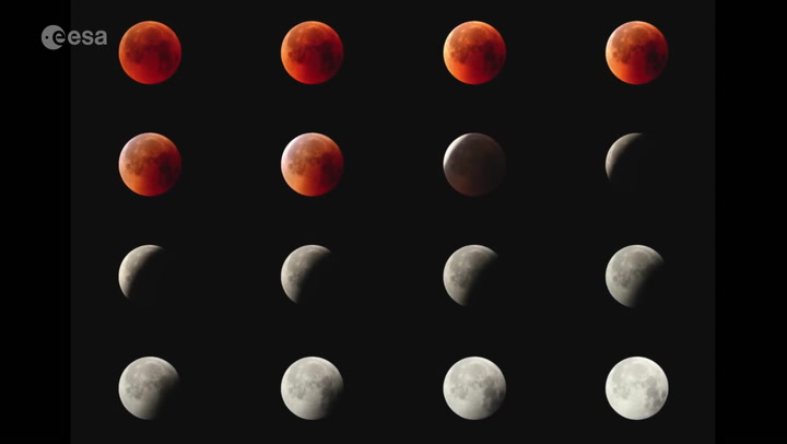 12 of the Best Photos Captured of the Super Blood Wolf Moon