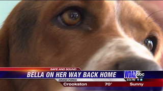 Bella found safe and sound