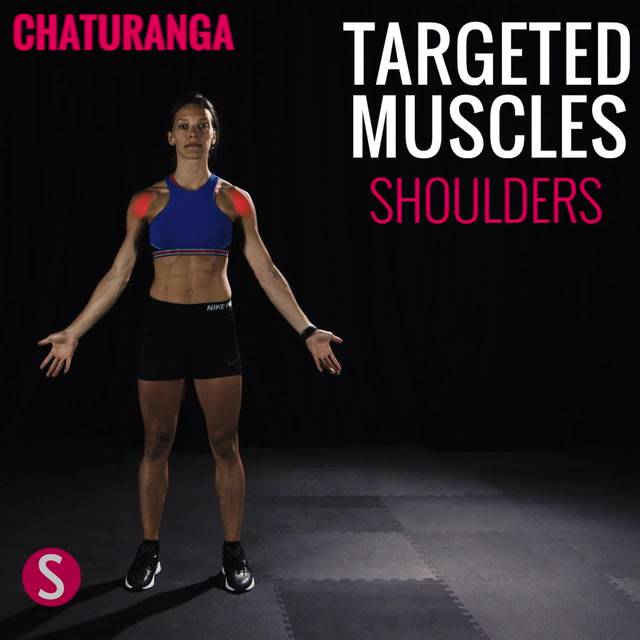 Moves and Muscles: Chaturanga