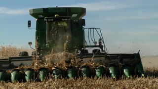 AgweekTV: Kaler Farms Corn Stalk Guide