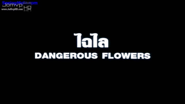 Chai Lai Angels Dangerous Flowers