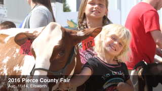 Pierce County Fair 2016 has record gate sales