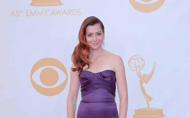New ABC Sitcom Man Of The House Adds How I Met Your Mother Alum Alyson Hannigan