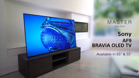 Sony KD-65AF9 Master Series 4K HDR TV with OLED screen, Picture Processor  X1™ Ultimate and Acoustic Surface Audio+™
