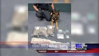 A Moorhead police dog lies next to drugs it found during a traffic stop Friday, June 2.
