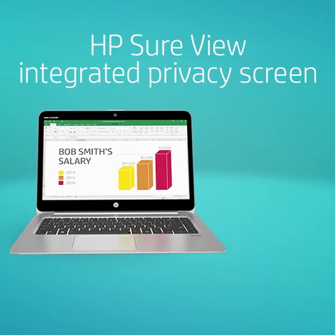HP Sure View Animated Vignette