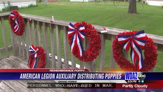 Remembrance poppies to be distributed in Grand Forks
