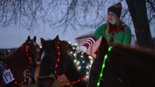 Harding's Horse'N Around Christmas Parade