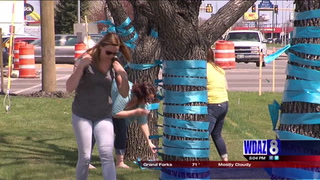 Blue Ribbons on 13th Ave S to raise awareness on Foster Care
